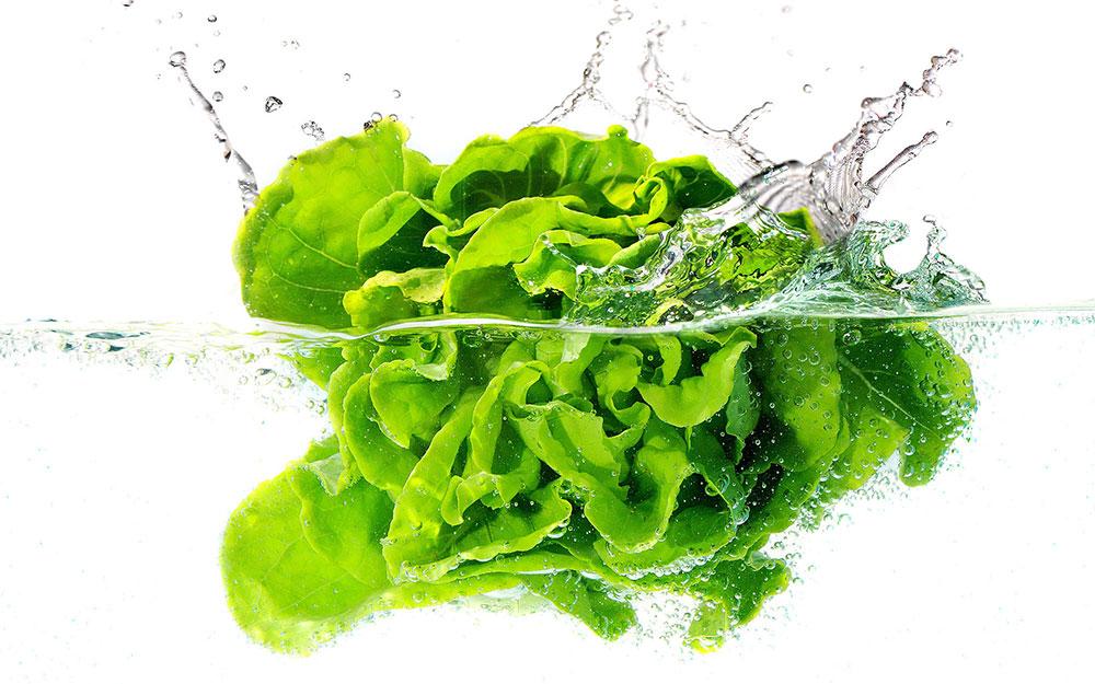 www.leverdurose.it/ – Verdure più fresche più a lungo